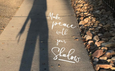 Make Peace with your Shadow
